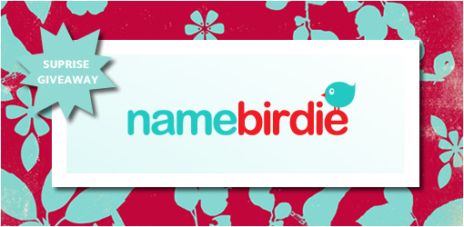 Surprise Giveaway from Name Birdie