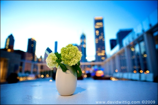 Greg + Joan | wedding | The Modern Wing of the Art Institute | Chicago