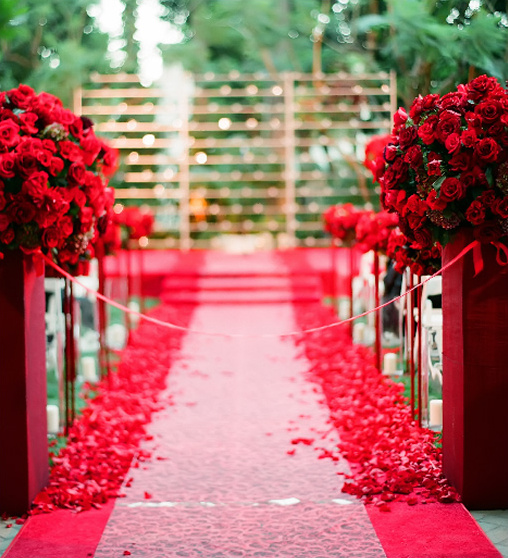 Amazing Wedding Aisle