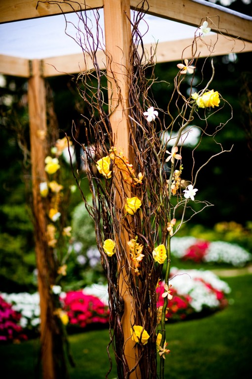 washington-dc-weddings-photo-by-stephen-voss-chuppah-by-elegance-and-simplicity