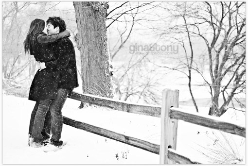 gina&tony, chicago wedding photographers, chicago engagement photographers