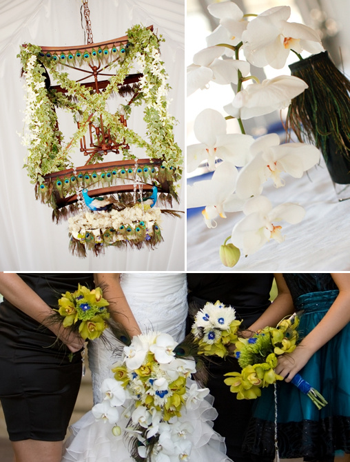 peacock wedding ideas