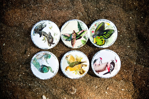 bird wedding buttons