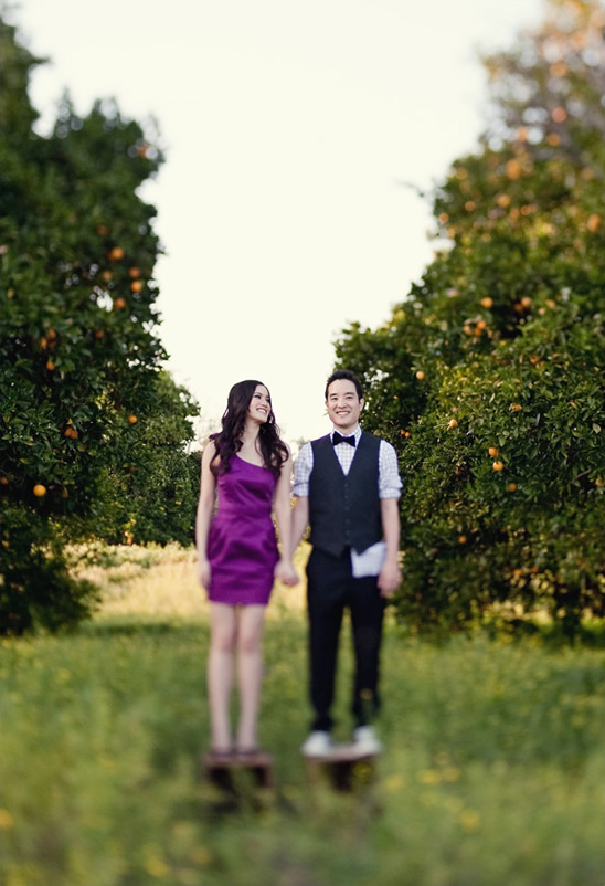 An Orange County Wedding Engagement