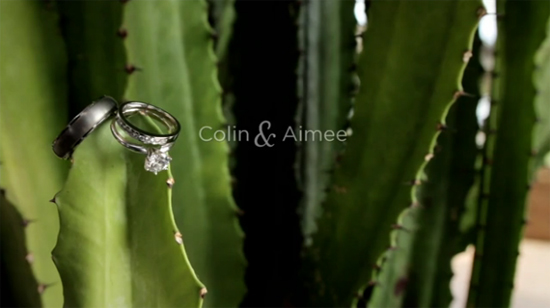 Colin & Aimee | Weddings by FortyOneTwenty