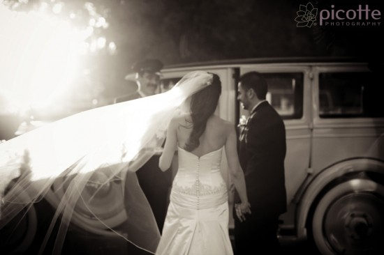 a romantic, elegant wedding . picotte photography