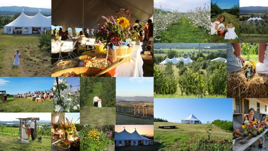 Farmtastic Vermont Orchard Wedding Venue