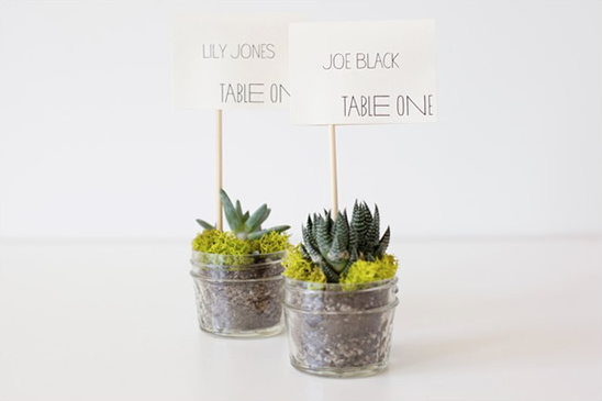 Do It Yourself Eco Friendly Succulent Place Cards