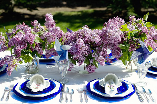 Afternoon Backyard Wedding Ideas - Backyard weddings ideas