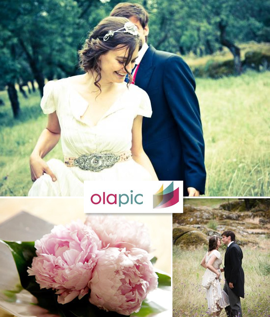 Your Personal Wedding Photograbber From Olapic