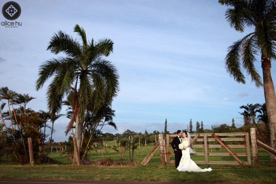 haiku mill, maui | destination wedding photography