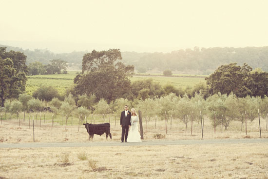 Kate Harrison Photography | Beltane Ranch Wedding Photography, Glen Ellen, CA