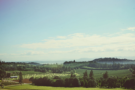 Chelsea + Adam : Oregon Vineyard Wedding