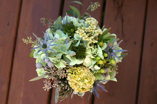 Amy & Seth's Succulents Wedding