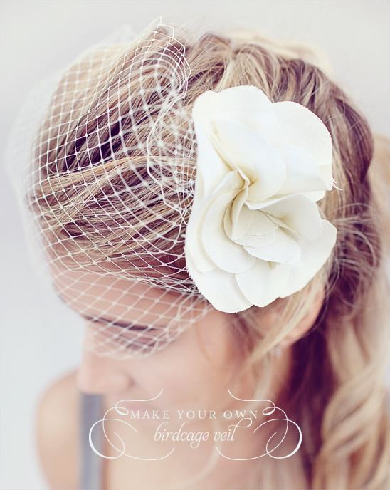 Do It Yourself Birdcage Veil