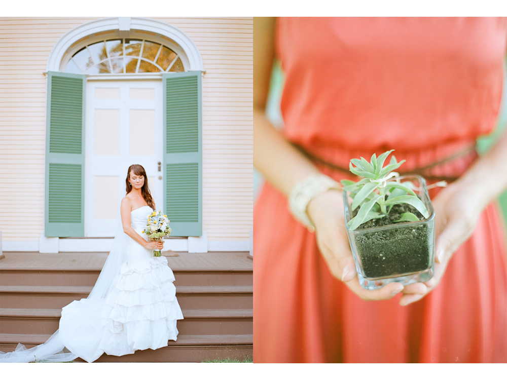 Wine Country Wedding in Kenwood, CA: Chateau St. Jean