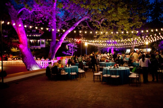 A summer wedding is the PERFECT time for Bistro Lighting!!