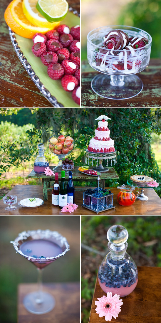 Blueberry Fields Wedding By Sarah De Shaw