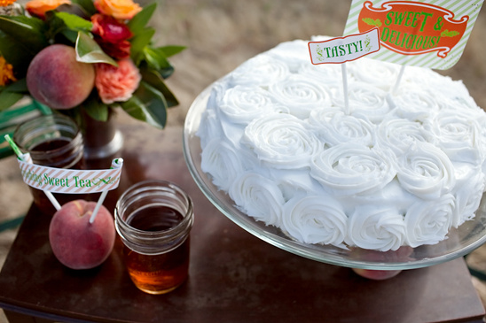 Sweet South Wedding Ideas By Goodnickels Photography