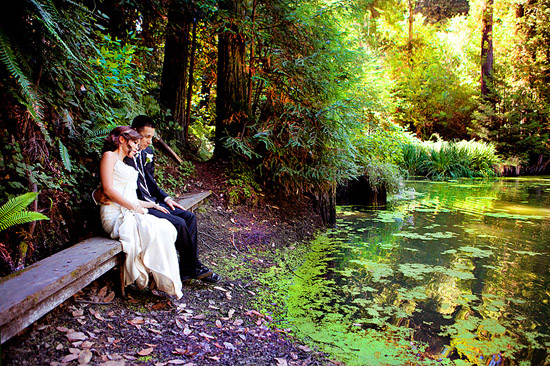 Nestldown Wedding Photography - Los Gatos - California Redwood Forest
