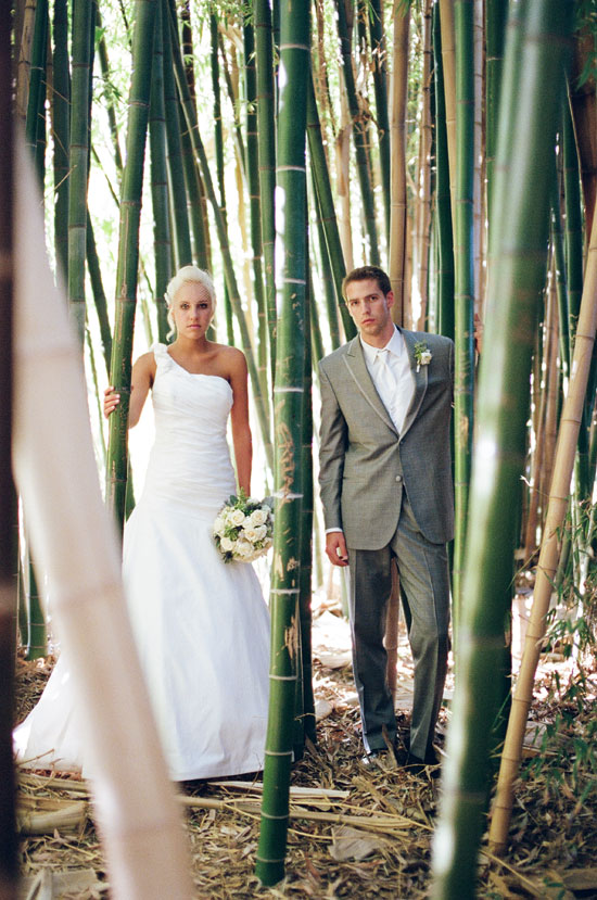 Wedding couple in bambo forest