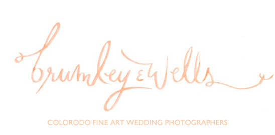 Brumley And Wells Wedding Photographers