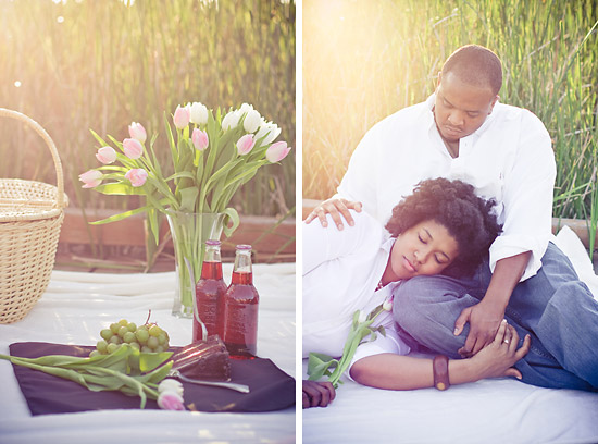 Warm Picnic Engagement Session - Dallas Wedding Photography