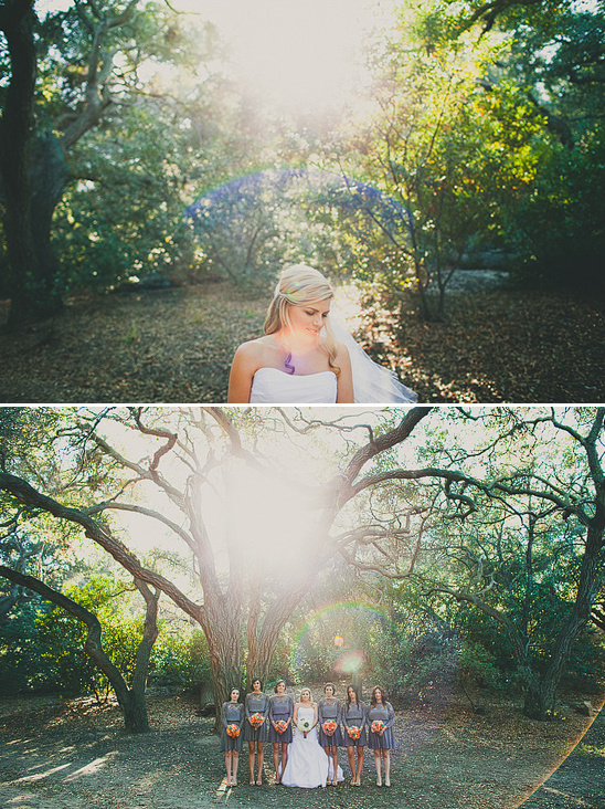 DIY Oak Canyon Nature Center Wedding