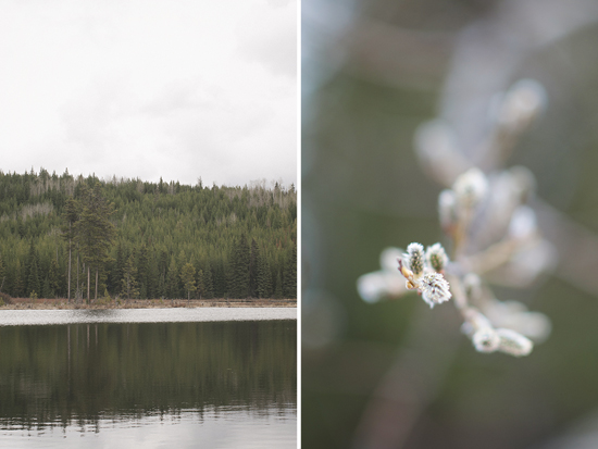 An Okanagan Mountain Rustic Wedding