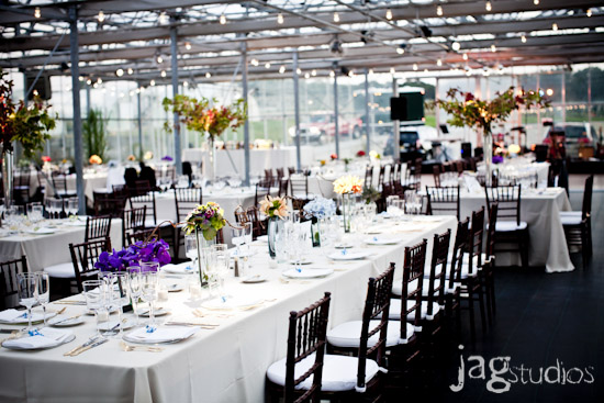 Greenhouse Wedding :: Bright and Bold :: JAGstudios
