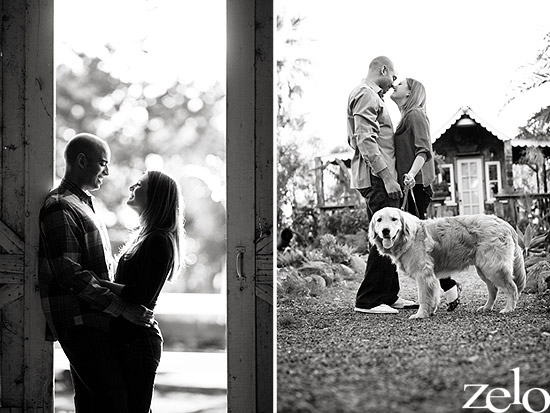 puppy-engagement-session