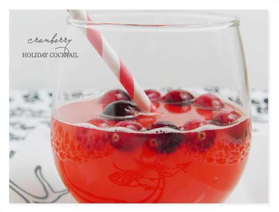Wedding Chicks Top 10 Holiday Cocktail Ideas