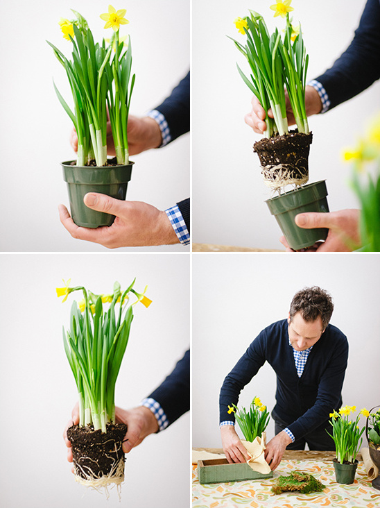 easy spring diy project