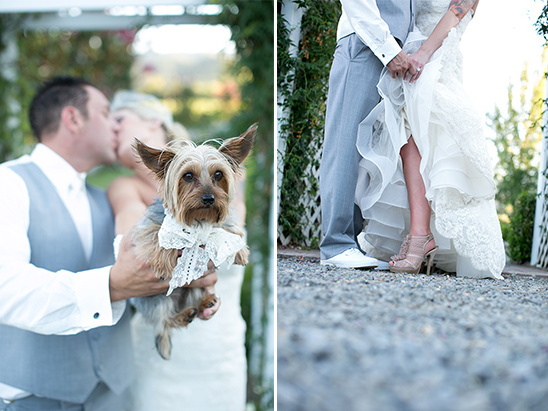 bring your dog to a wedding