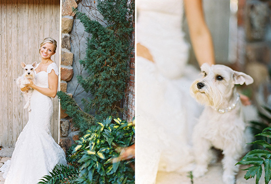 bridal portraits with dog