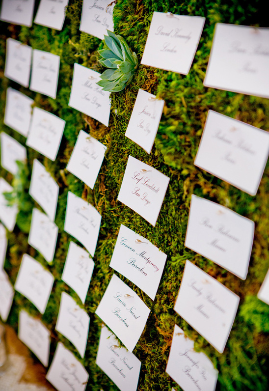 moss and succulent escort card wall