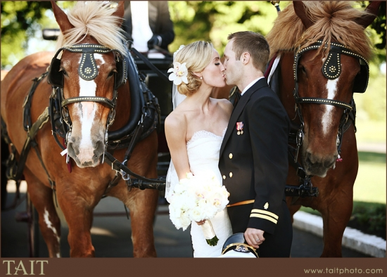 Horse Drawn Carriage for wedding