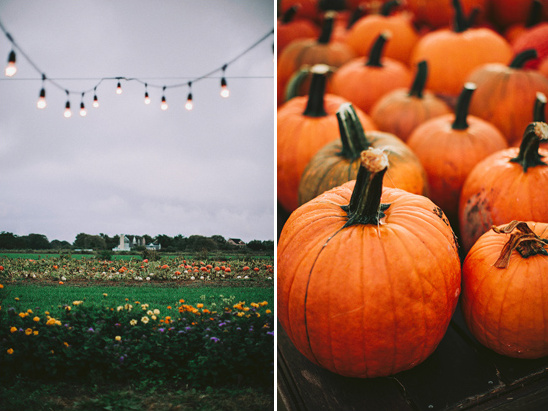 fall farm wedding