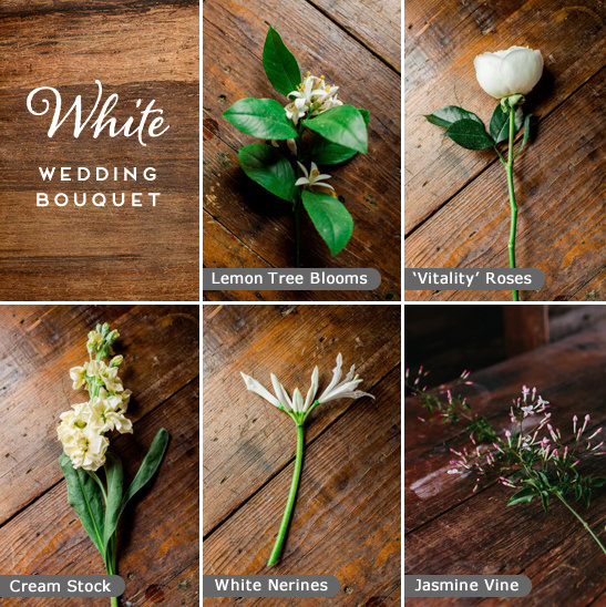 white wedding bouquet ingredients