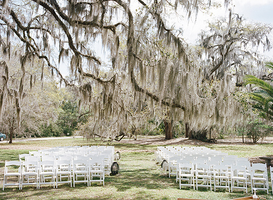 wedding ceremony under heirloom oaks