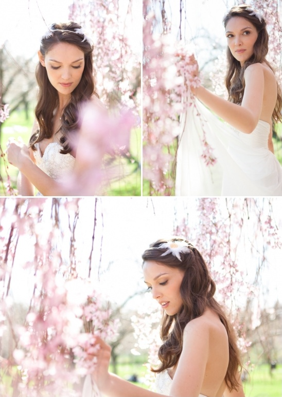 cherry blossom backdrop