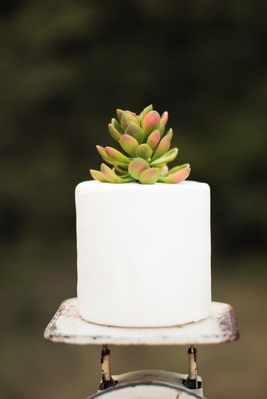 succulent wedding cake topper