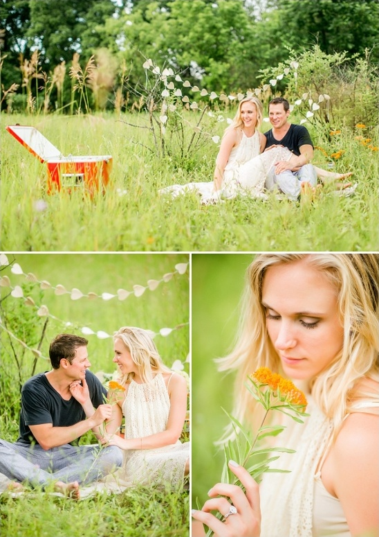private picnic engagement