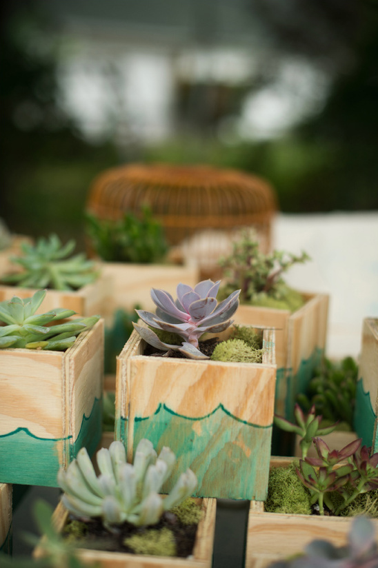 cute diy succulent wedding favors