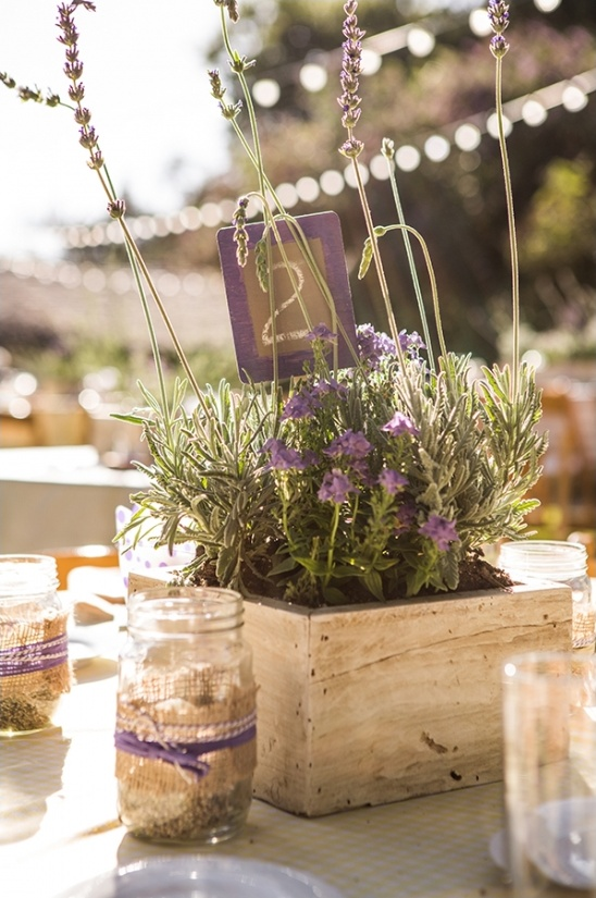 live lavender centerpiece and table number