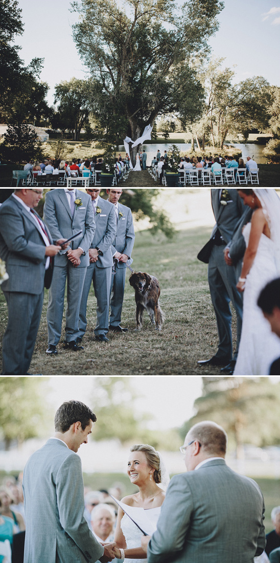 dog as a groomsman