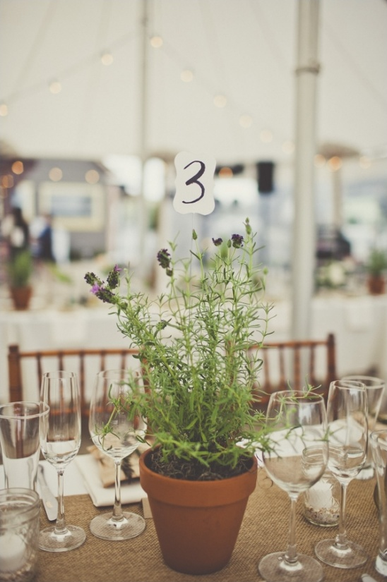 planted pot table numbers