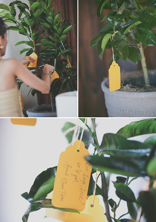guestbook tags on tree idea
