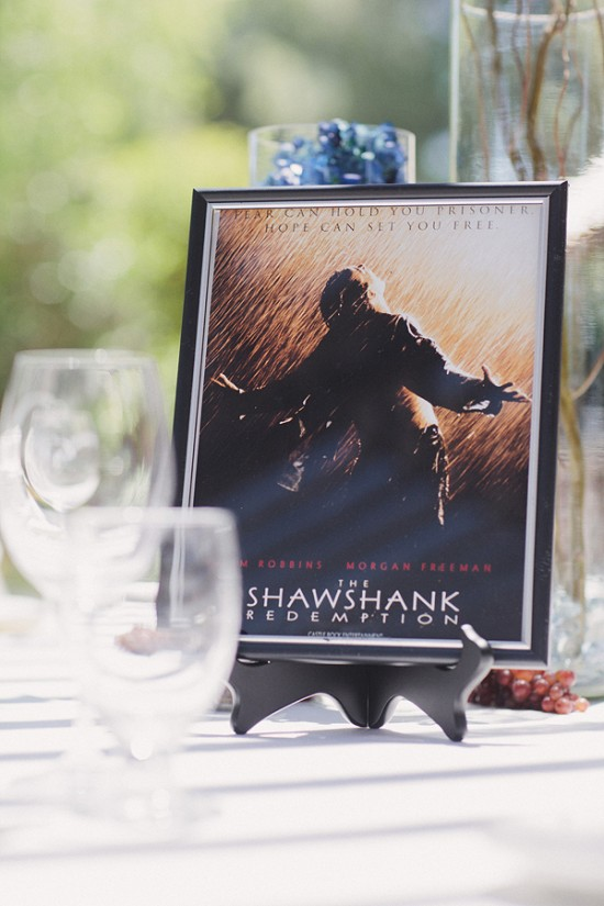 Theater & Movie Geek themed wedding in the Vineyard of Crooked Vine