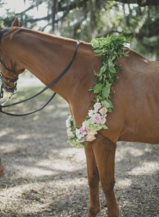 wedding garland for your horse